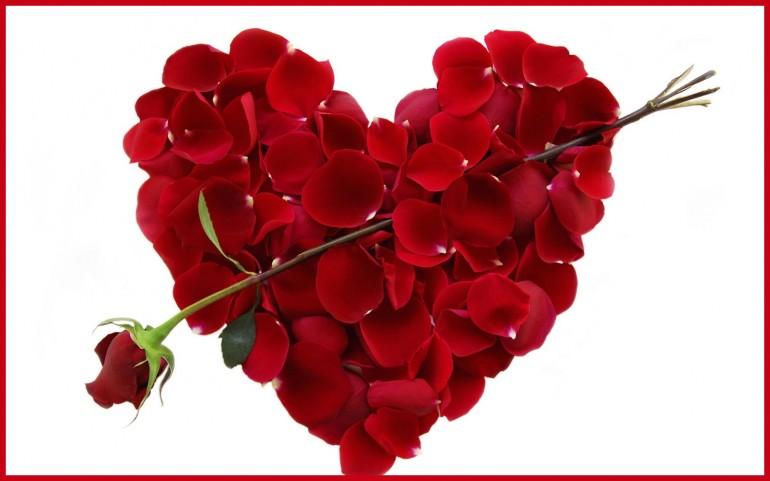 san_valentino_fiore